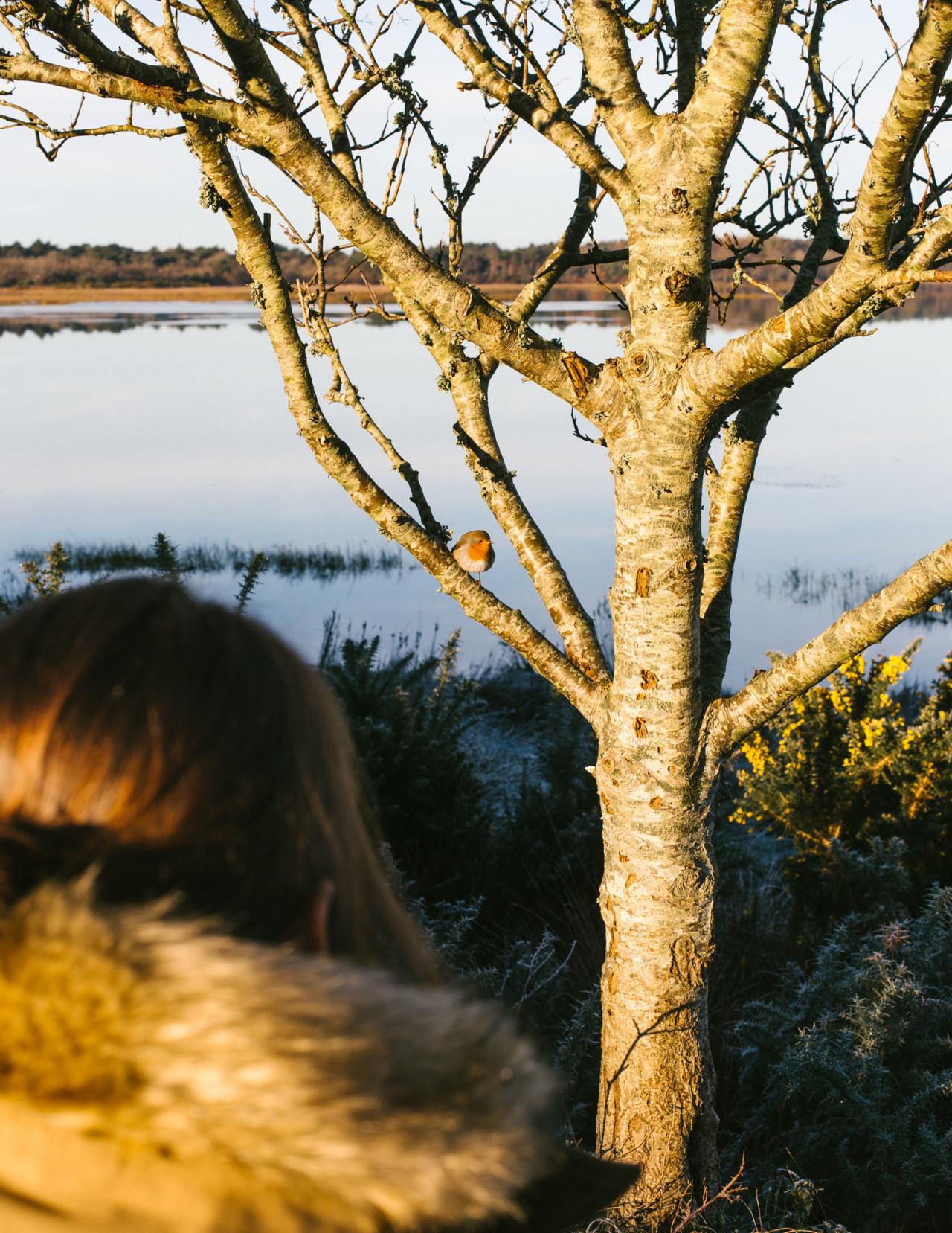 Continu-um; a photographic duo. Fore/Adventure